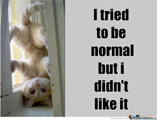 i-was-normal-once_o_251939
